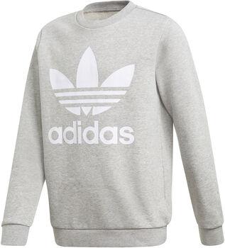 adidas Trefoil sweater Heren Grijs