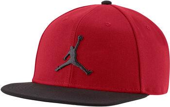 Nike Jordan Pro Jumpman cap Roze