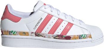 adidas Superstar Schoenen Meisjes Wit