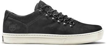 Timberland Alpine sneakers Heren Zwart