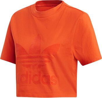 ADIDAS Cropped Tee Dames Oranje