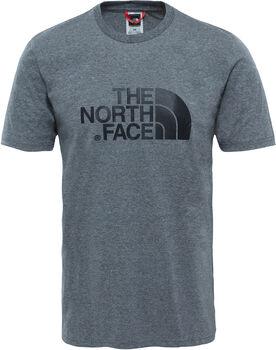 The North Face Easy shirt Heren Grijs