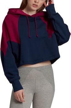 adidas Large Logo Crop Hoodie Dames Blauw