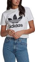 Adicolor Classics Trefoil T-shirt