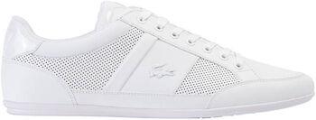Lacoste Chaymon 120-3 sneakers Heren Wit