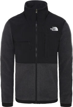 The North Face Denali 2 Fleece Jacket Heren Grijs