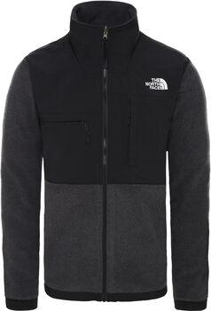 The North Face Denali 2 Fleece Jacket Heren Grijs