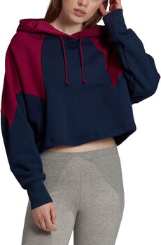 adidas Large logo hoodie Dames Blauw